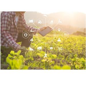 Ψηφιακός μετασχηματισμός και γεωργική παραγωγή